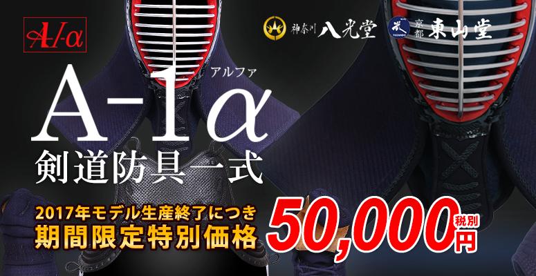 期間限定特別価格・A-1アルファ