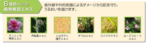 6種類の植物美容エキス