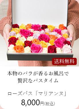 ローズバス・マリアンヌ 8000円