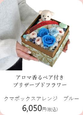 クマボックスアレンジ・ブルー 6050円