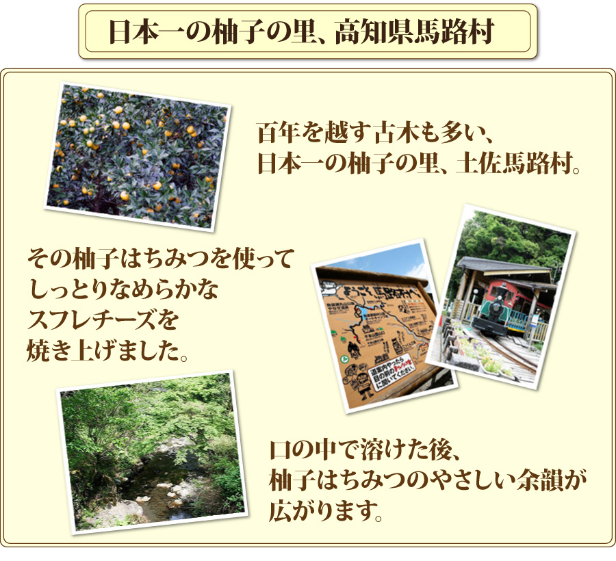日本一の柚子の里、高知県馬路村