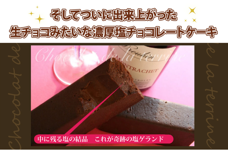 ついに出来あがった生チョコみたいな濃厚塩チョコレートケーキ