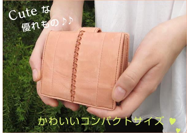 how to put money in iota wallet