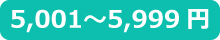 ~5,999円