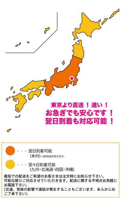 東京より直送!速い!お急ぎでも安心です!翌日到着も対応可能!