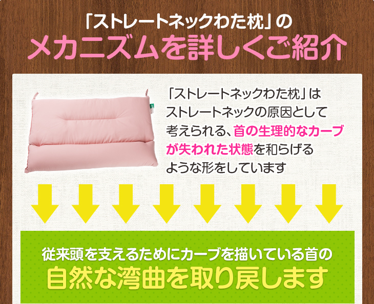 「ストレートネックわた枕」のメカニズムを詳しくご紹介 従来頭を支えるためにカーブを描いている首の自然な湾曲を取り戻します