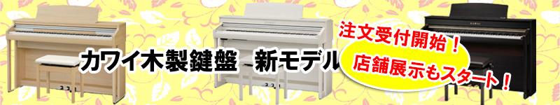 木製鍵盤電子ピアノ