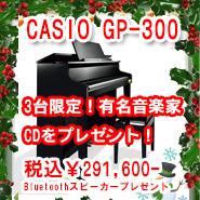 カシオ GP-300