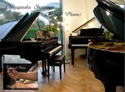 ピアノショールーム 新品ピアノ リフレッシュ済み中古ピアノ 世界の1流ブランドピアノ 電子ピアノとズラリと並ぶショールーム!そして2階はレッスン室となっており、毎日、ピアノ好きの方がご来店!是非、ご家族、ご友人とお越し下さいませ!名古屋のピアノ専門店 親和楽器