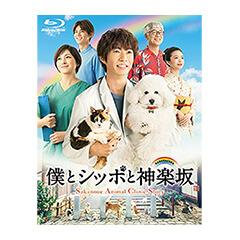 【DVD】AKB48 ネ申テレビ シーズン11&シーズン12