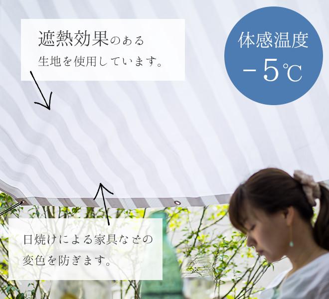 体感温度-5度