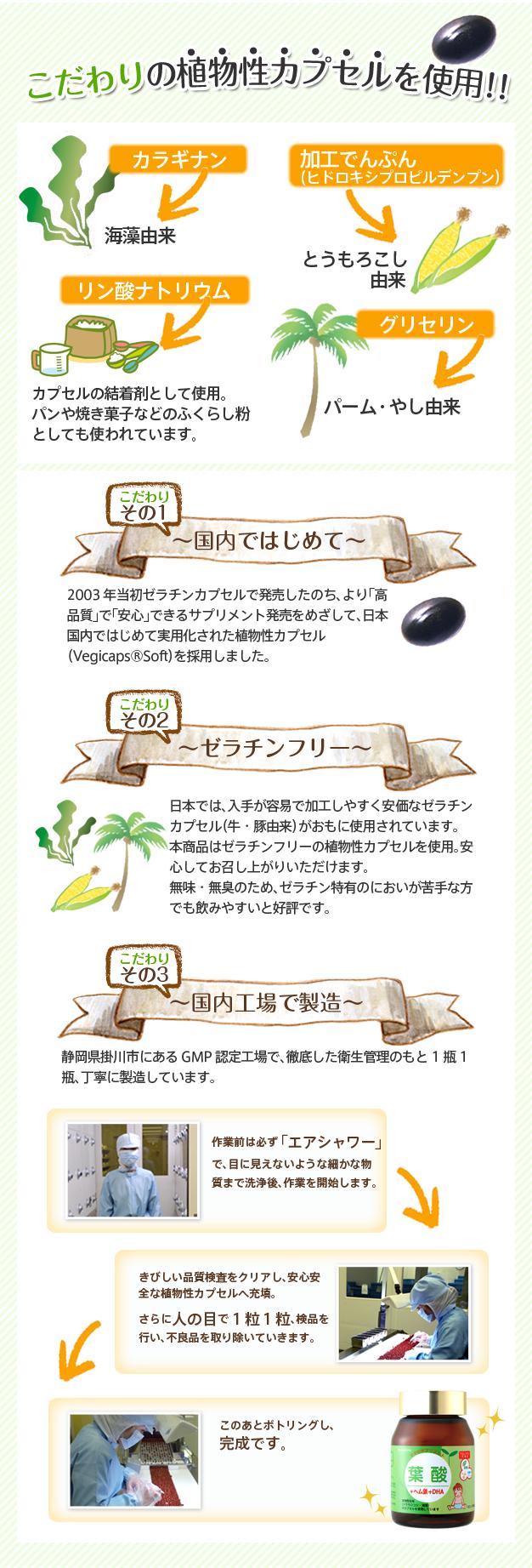 葉酸説明4