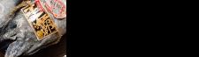 国産本生マグロ