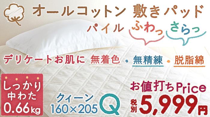 敷きパッド 夏用 クイーン(ベッド用寝具 ベッドパッド クィーン) 46561
