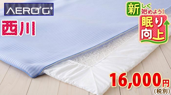 防ダニ 敷き布団 シングル (敷き布団 ベッド用薄型 S/ベッド用 ベッドパッド S/ベッド用 薄型 )6678