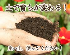 土で育ちが変わる!