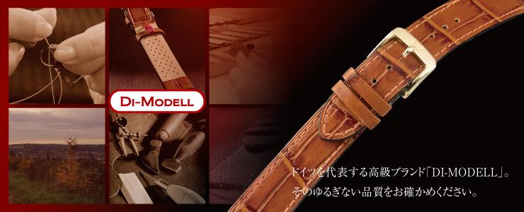 Di-Modellカテゴリー