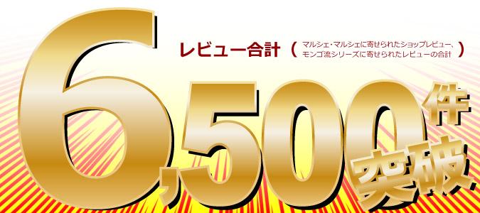 レヴュー6500突破