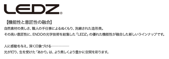 LEDZ説明