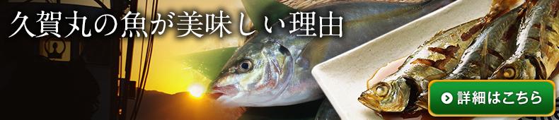 五島列島の魚がおいしい理由