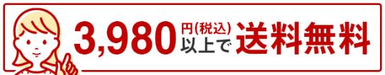 税込3980円以上で送料無料