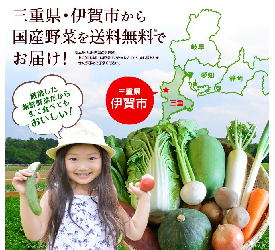 三重県・伊賀市から送料無料で全国へお届け!