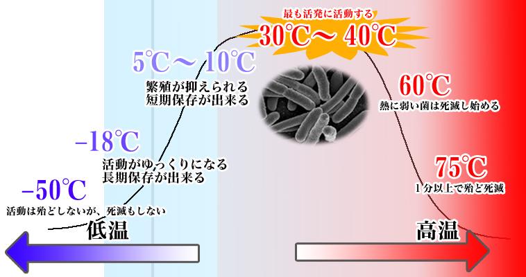 食品保温箱_保温弁当箱の正しい使い方、お弁当の温度管理特集