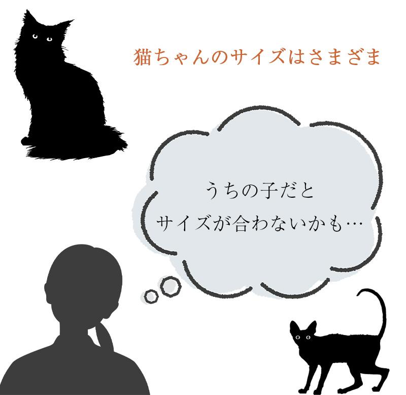 猫の術後服