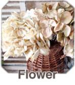 フラワー(紫陽花 ラベンダー.etc)