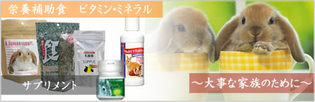 栄養補助食品 サプリメント
