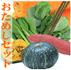 野菜パウダーお試しセット