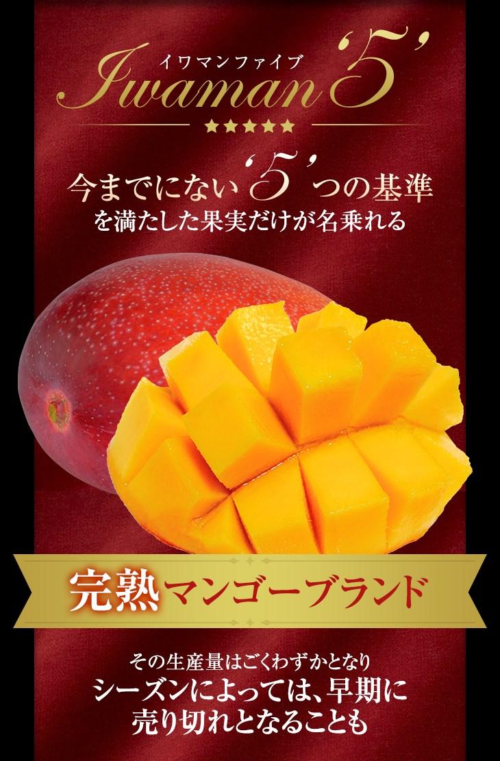 今までにない5つの基準を満たした果実だけが名乗れる完熟マンゴーブランド シーズンによっては、早期に売れ切れとなることも