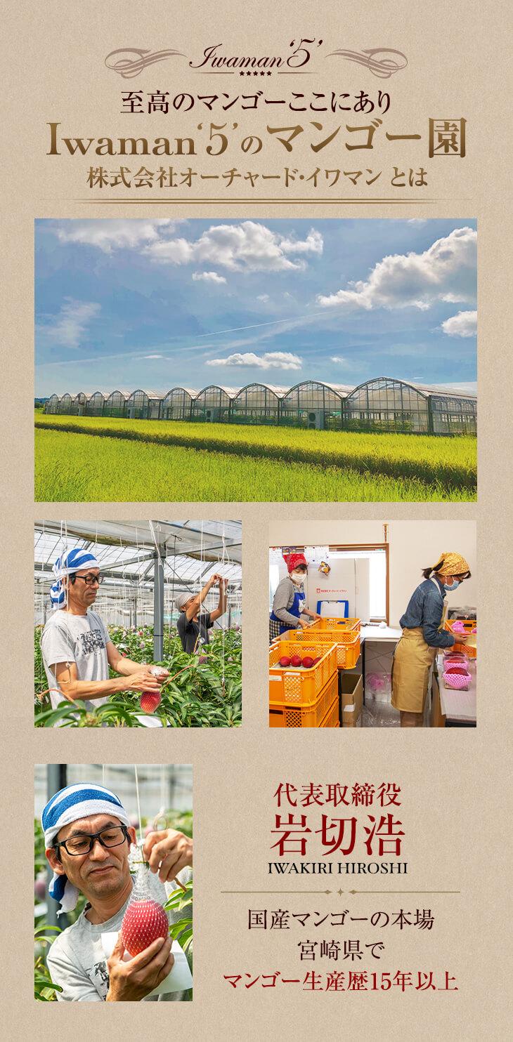 Iwaman5のマンゴー園 株式会社オーチャード・イワマンとは マンゴー生産歴15年以上