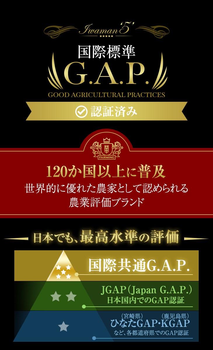 国際標準GAP 120か国以上に普及、世界的に優れた農家として認められる農業評価ブランド 日本でも最高水準の評価