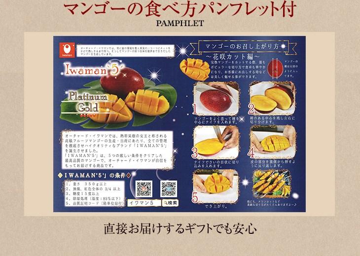 マンゴーの食べ方パンフレット付き 直接お届けするギフトでも安心