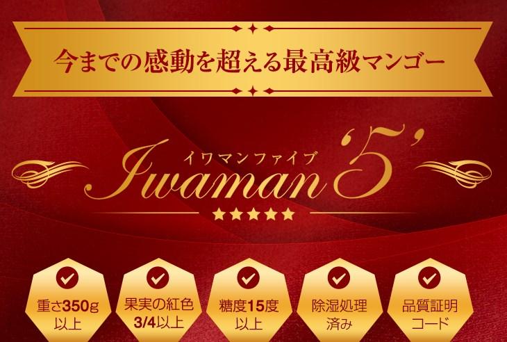 今までの感動を超える最高級マンゴー Iwaman5