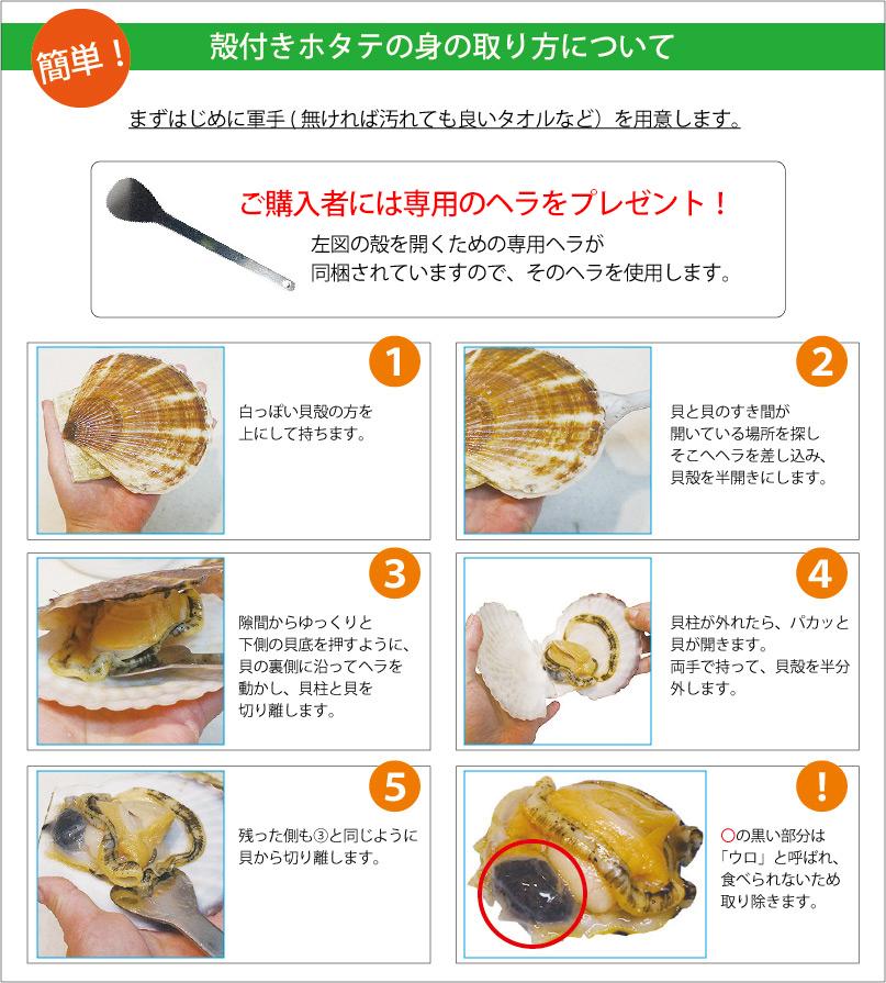 北海道米 生産者紹介 北海道 ふっくりんこ ふっくりんこ ななつぼし 送料無料 なまらモグぱっく
