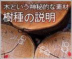 木製品に使用している樹種の説明