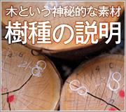 無垢材・木製デザイン雑貨に使われている木の説明
