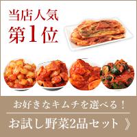 選べる!野菜キムチお試し2品セット