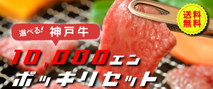 送料無料 選べる!神戸牛1万円ポッキリセット。お得に神戸牛を堪能できる。