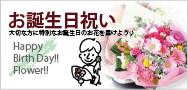 お誕生日のお祝い花特集 大切なバースデーギフトをお花で演出致します。花束やアレンジメント。