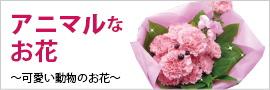 プードルやふくろうなどの動物、アニマルフラワーアレンジメント、花束
