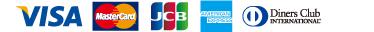 Visa/Master Card/JCB/AMERICAN EXPRESS/Diners/Club TS3
