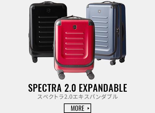 SPECTRA 2.0 EXPANDABLE スペクトラ2.0エキスパンダブル