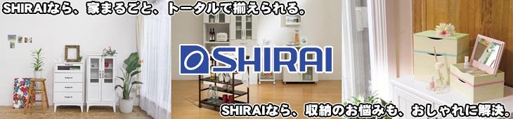 SHIRAI/��滺�� ��Ω�ȶ����