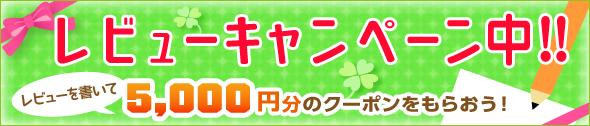 レビューを書いて5000円のクーポンをもらおう!