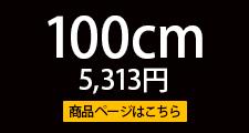 WRS-100B