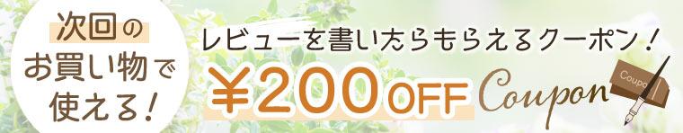 レビューを書いて200円オフクーポンGET!
