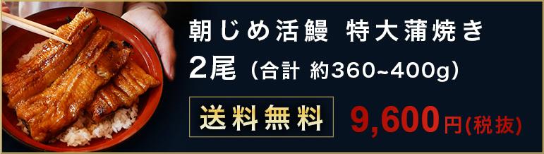 朝じめ活鰻 特大蒲焼き2尾 合計約 360~400 送料無料 8300円